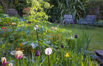 φροντίδα κήπου την άνοιξη